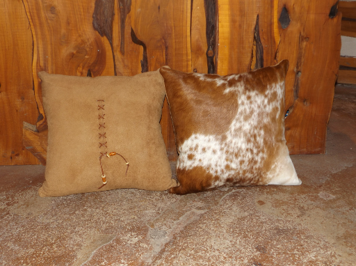 Variety of Texas Longhorn Pillows